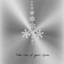 Spine-Snowflake-NY