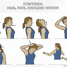 Stretches_Neck
