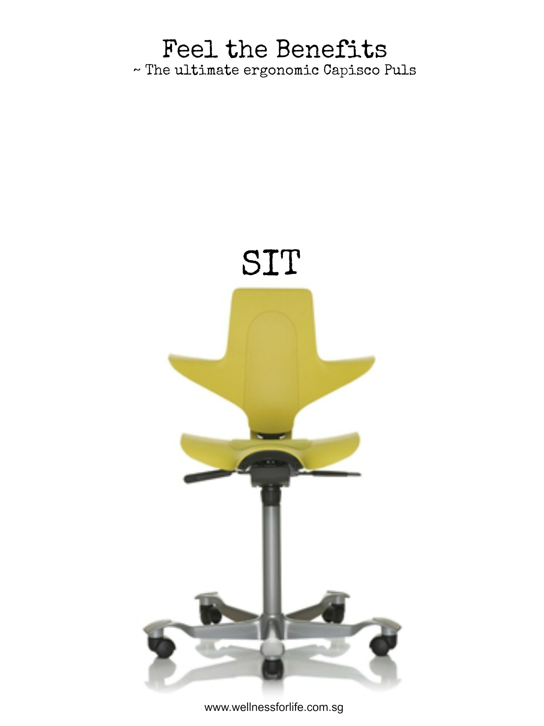 wellness for life chiropractic ultimate ergonomic chair promotion